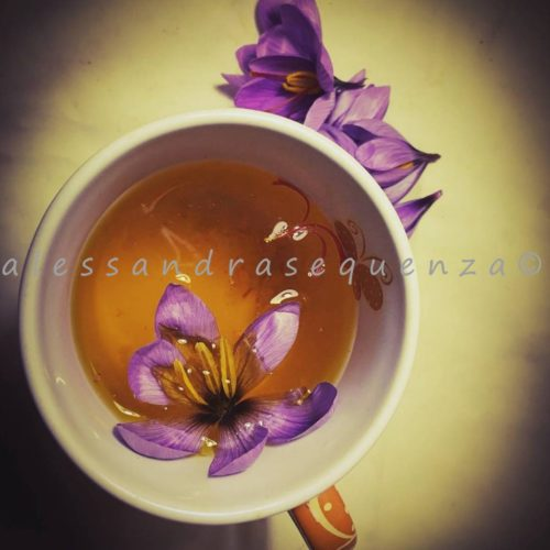 Alessandra-Sequenza-4-500x500